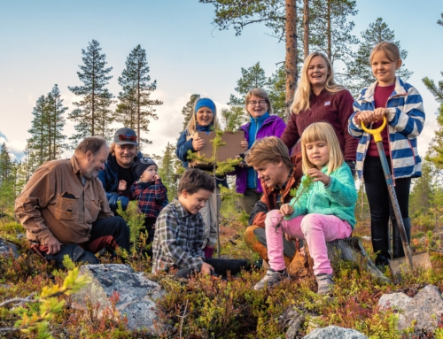 Podpořme společně výsadbu stromů v Laponsku