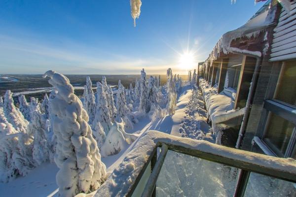 hotel_isosyote_snowtrees